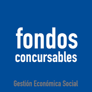 https://gruposprioritariosvina.cl/igp/fondos-concursables/